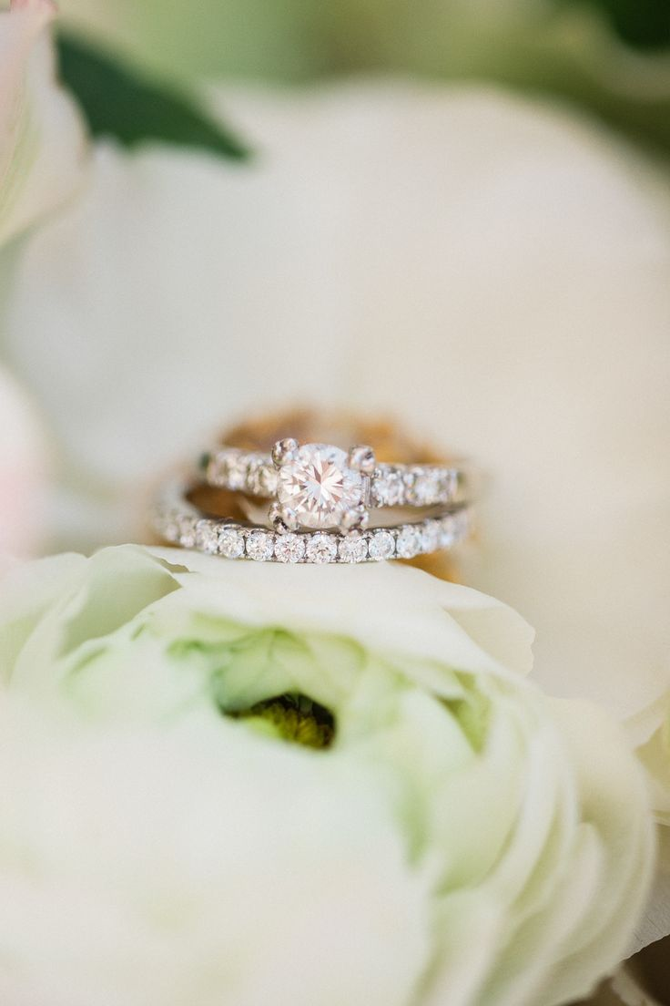 Elegant engagement ring: Photography: Treebird - treebirdphoto.com/...