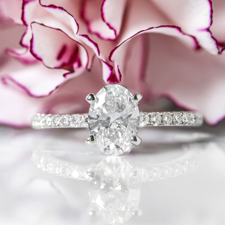 Spice up your classic engagement ring with anything from Shane Co. and you will ...