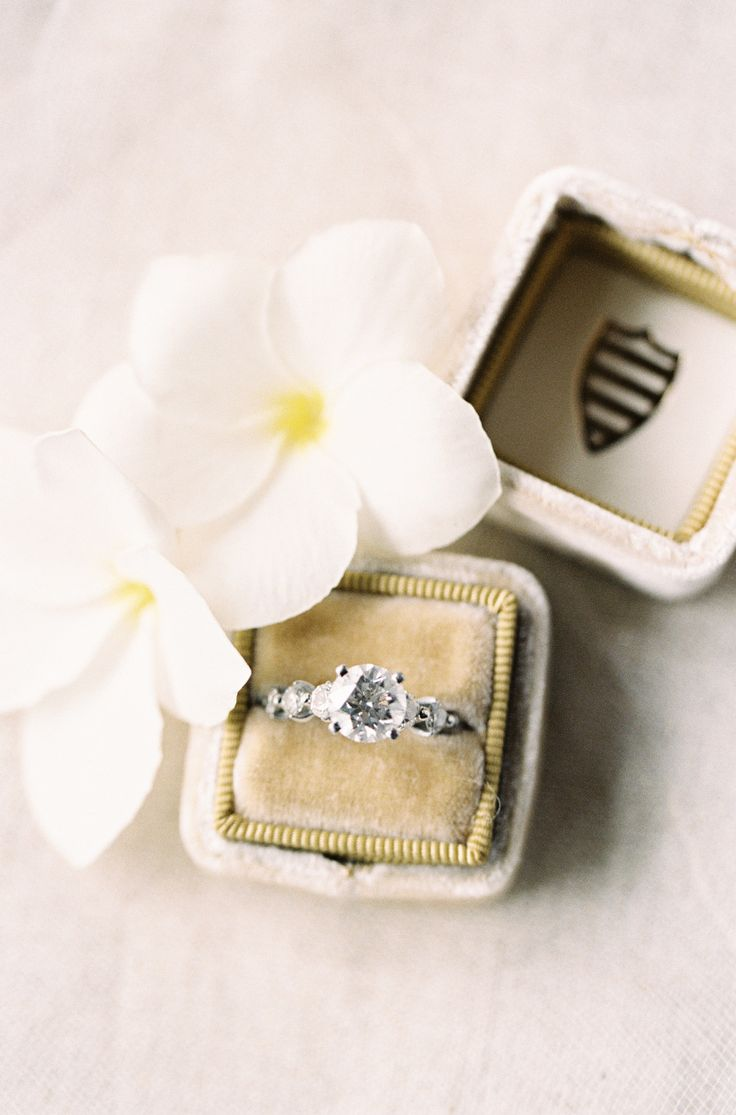 Solitaire engagement ring in a Mrs. Box. Photography : Kayla Barker Fine Art Pho...