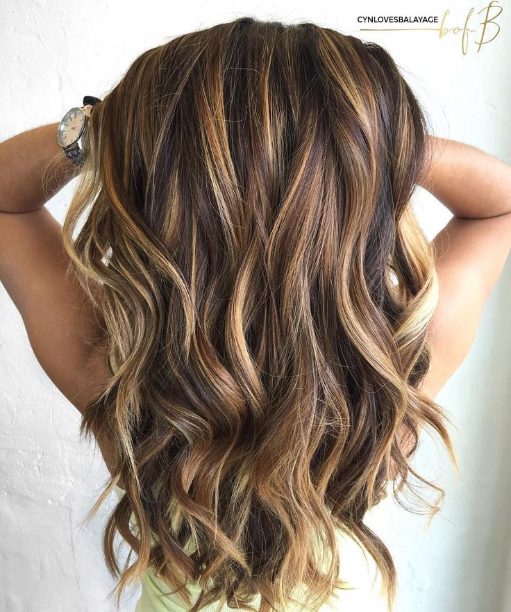 Long Brown Hair With Caramel Highlights...