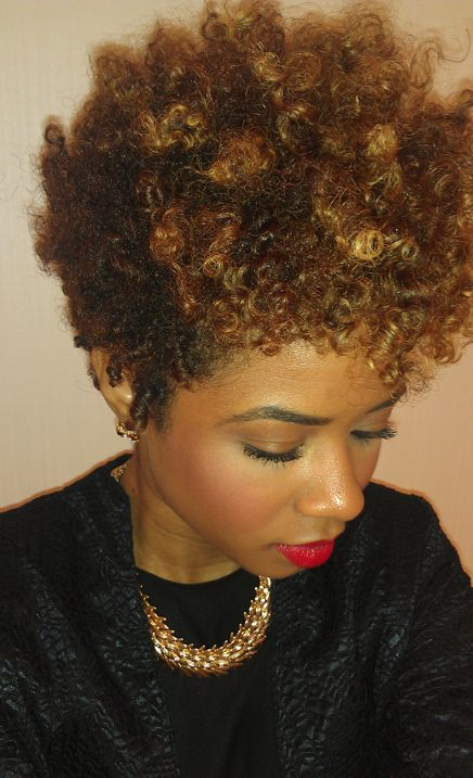 images of two strand twists hairstyles | Two-Strand Twist Out Using New Products...