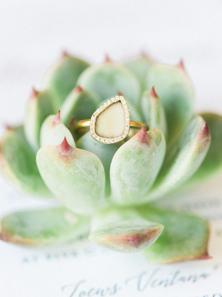 This wooly mammoth fossil engagement ring is beyond cool! Photography : Elyse Ha...