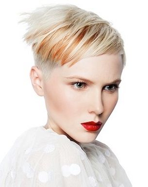 Short Hairstyles 2012 for Women (7)