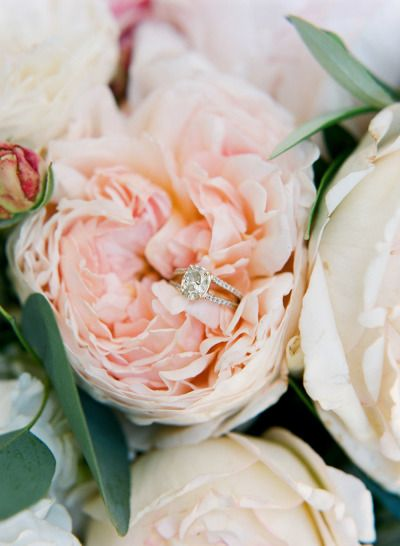Hello pretty: www.stylemepretty... | Photography: Diana McGregor - www.dianamcgr...