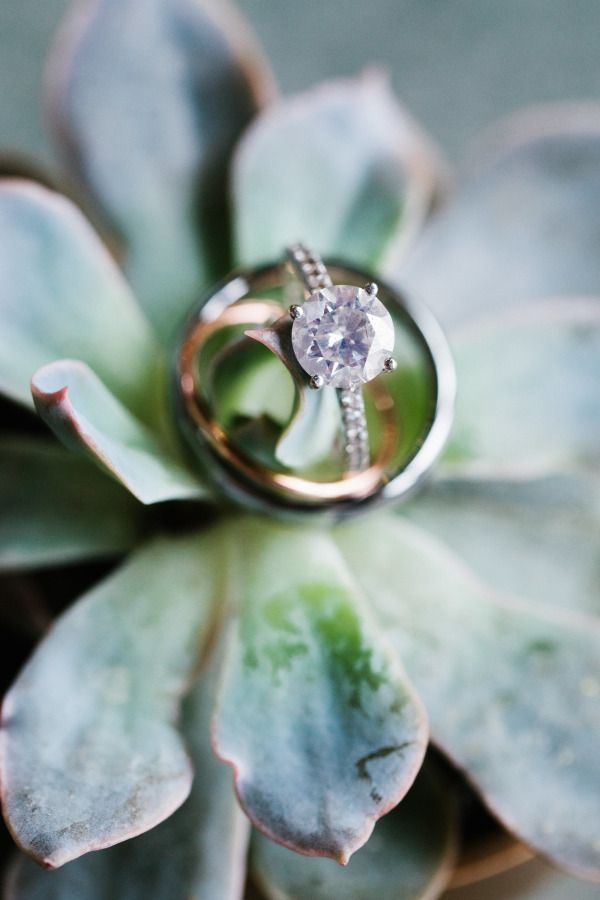 Solitaire diamond: www.stylemepretty... | Photography: Anna Routh - annarouthpho...
