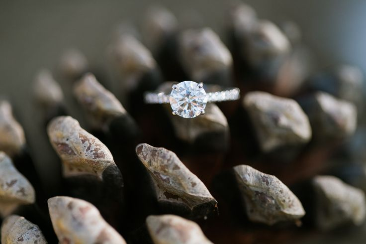 Timeless solitaire engagement ring: www.stylemepretty... | Photography: Jasmine ...