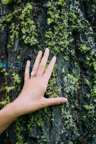 Engagement ring: www.stylemepretty... | Photography: Cluney - www.cluneyphoto.co...