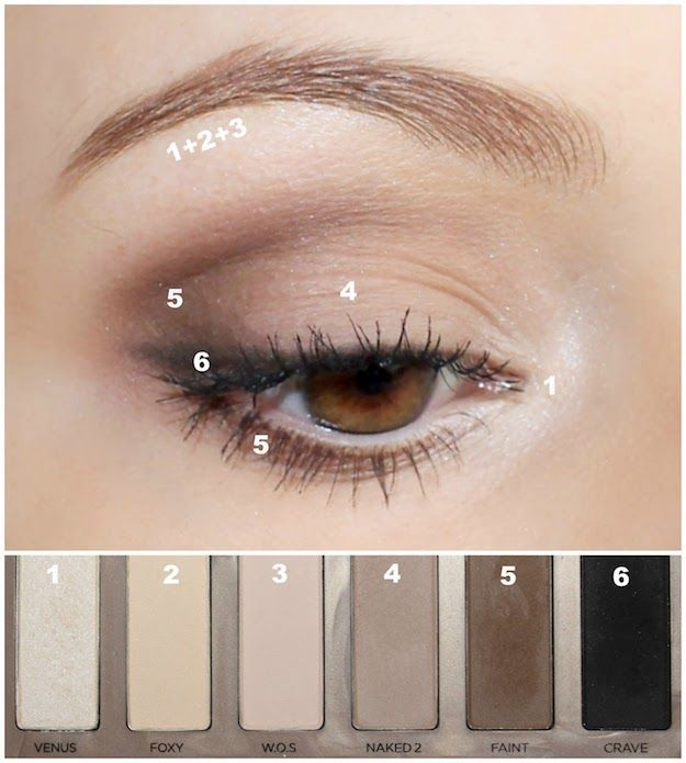 Natural Makeup Look: Eyeshadow | Master The Natural Makeup Look With These Beaut...