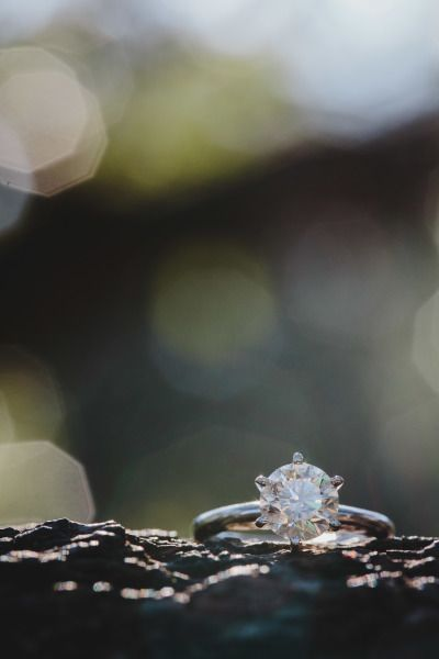 Jacksonville Treaty Oak Park Engagement: www.stylemepretty... | Photography: Ste...