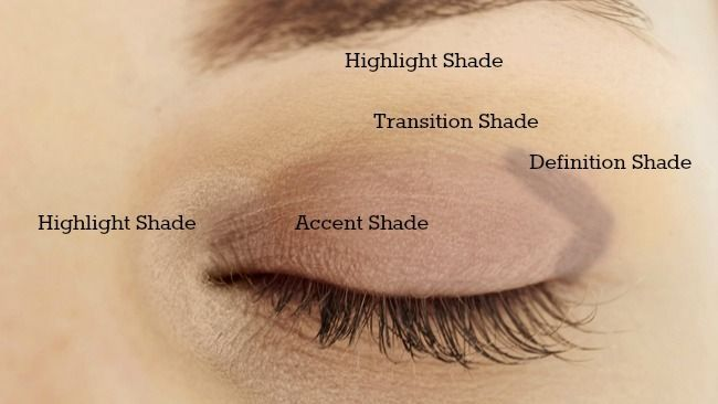 Hey Guys! So, I thought I would just briefly explain where eyeshadow goes on hoo...