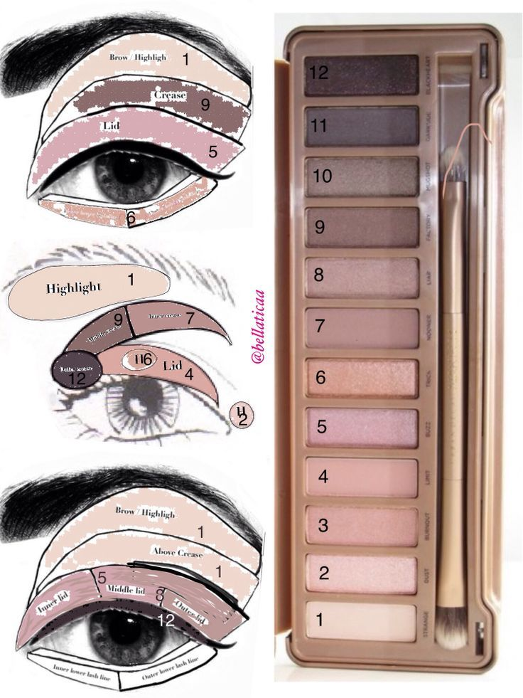 Urban Decay's Naked3 Eyeshadow Palette: Part 2: Application Guide | thebeautyspo...