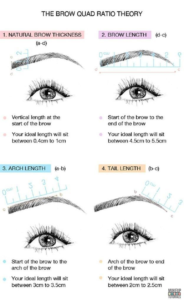DIY Makeup: How To Shape Perfect Eyebrows. The best guide for beginners. Beauty ...