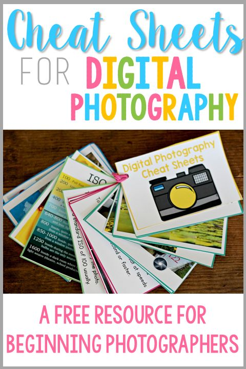 Do you DREAM of taking gorgeous TPT product images? Beautiful shots of your cl...