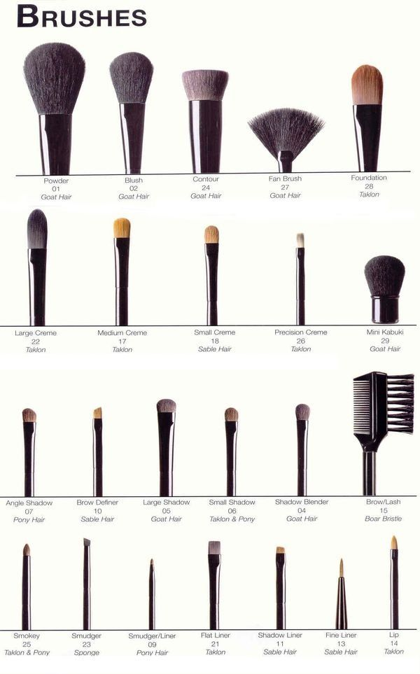 A Guide Of Makeup Brushes And Their Uses. Incredibly Useful For Every Girl! #Bea...