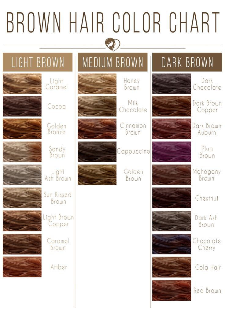 Light Brown Hair Color Chart #brownhair #brunette ❤️ Brown hair color chart ...