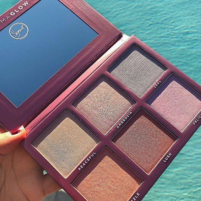 Oh my goodness Sigma just creates the most beautiful palettes! The chroma glow p...
