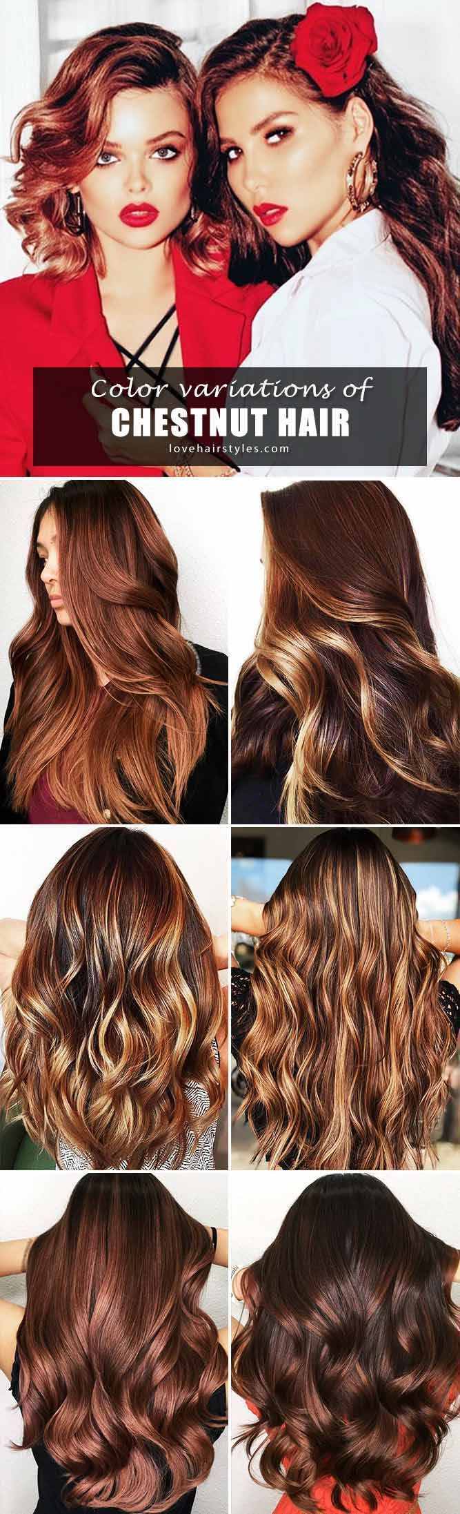 Hair Color 2017 2018 Want To Find Some Chestnut Hair Color